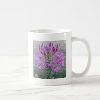 Violet Queen Cleome Coffee Mug
