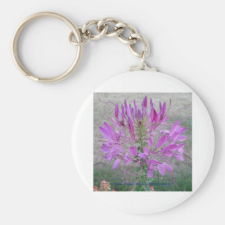 Violet Queen Cleome Keychains
