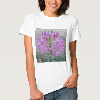 Violet Queen Cleome T-Shirt