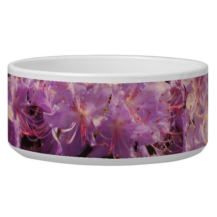 violet rhododendron bowl