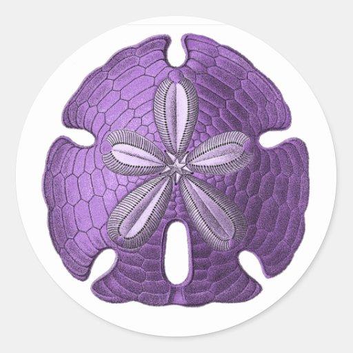 Violet Sand Dollar Sticker
