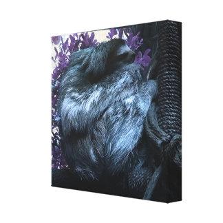 Violet Sloth Canvas Print