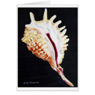 Violet Spider conch Card