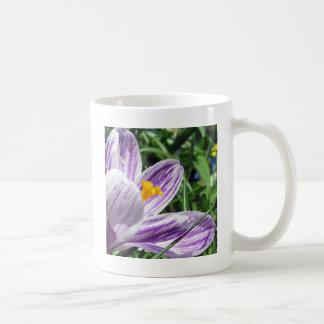 Violet spring crocus classic white coffee mug