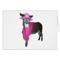 Violet the Donkey Dressed in Pink