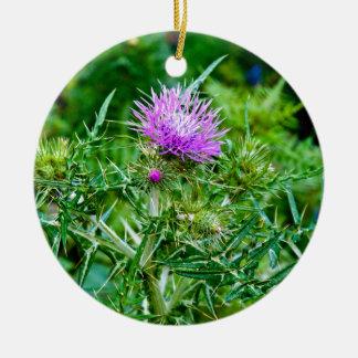 Violet thistle bloom - island Sicily Ceramic Ornament