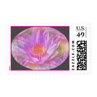 Violet Water Lilly Postage