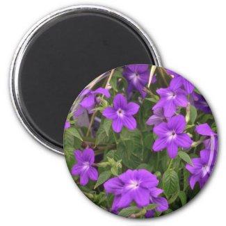 Violet Weeds Magnet