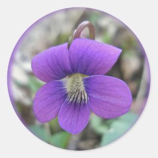 Violet Wildflower Coordinating Items Classic Round Sticker
