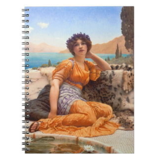 Violeta 1902 notebook
