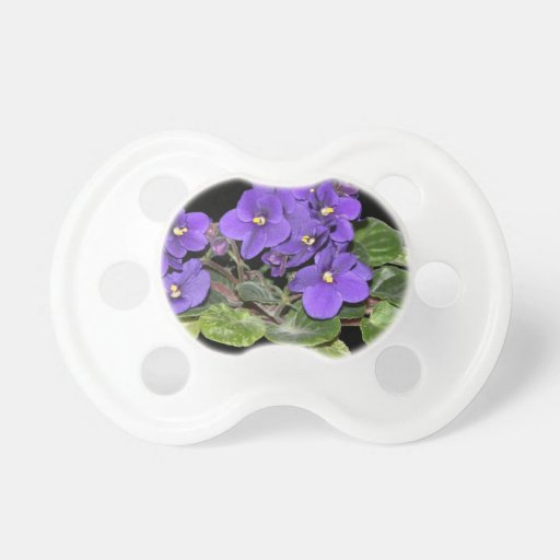 Violeta africana chupetes de bebe