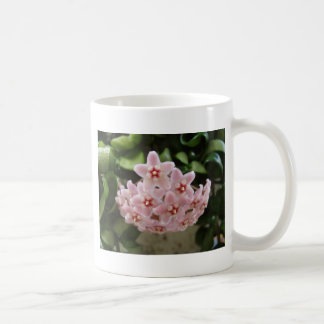 Violeta africana hermosa taza básica blanca
