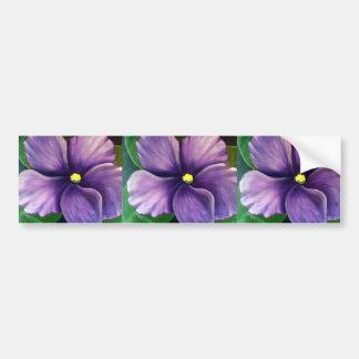 Violeta africana púrpura etiqueta de parachoque