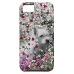 Violeta en flores - perro blanco de Westie iPhone 5 Carcasas