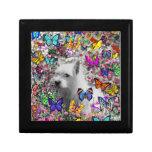 Violeta en mariposas - perro blanco de Westie Cajas De Regalo