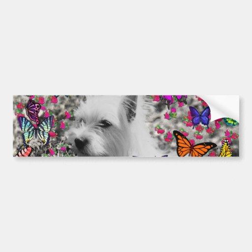 Violeta en mariposas - perro blanco de Westie Etiqueta De Parachoque