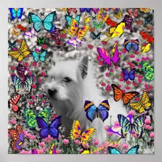 Violeta en mariposas - perro blanco de Westie Impresiones