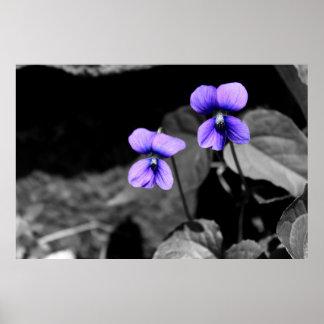 Violeta fatal póster