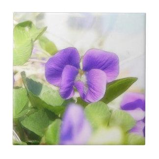 Violeta preciosa de la primavera teja  ceramica