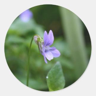 Violeta salvaje pegatina redonda