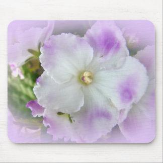 Violetas africanas de lujo púrpuras y blancas tapete de ratón