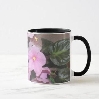 Violetas africanas taza