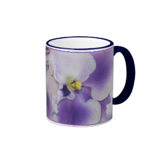Violetas africanas taza a dos colores