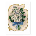 Violetas blancas del vintage tarjeta postal