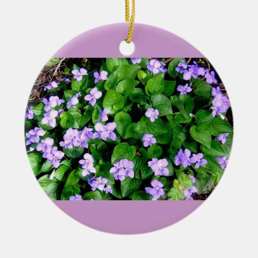 ¡Violetas del withj del ornamento! - Estilo altern Ornamentos De Reyes