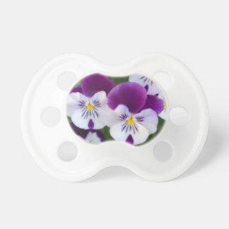 Violetas púrpuras chupete de bebe