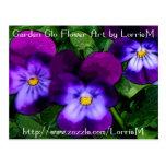 Violetas púrpuras tarjeta postal