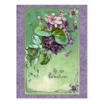 Violetas y cintas de la tarjeta del día de San Tarjeta Postal
