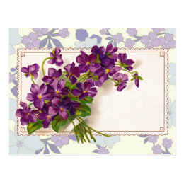 Violets for any occasion - Add your own words! Postcard