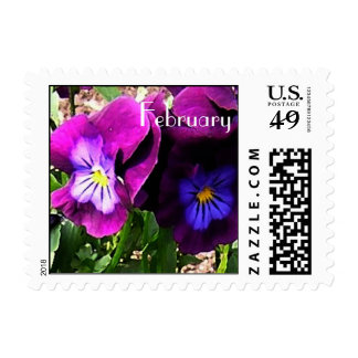 Violets for February Birthday Postage