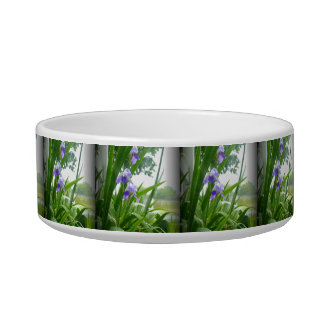 Violets in the Rain Cat Water Bowls
