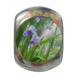 Violets in the Rain Jelly Belly Candy Jars
