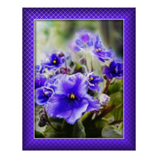 Violets in the Window Poster