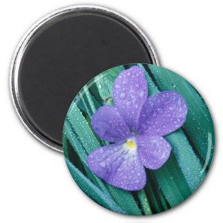 Violets R Blue 2 Inch Round Magnet