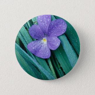 Violets R Blue Pinback Button