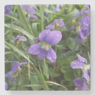 Violets Stone Coaster