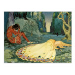 Violette sleeping in the forest post card