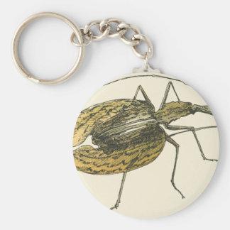 Violin Beetle Keychain