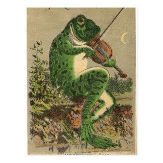 Violin Frog Postcard