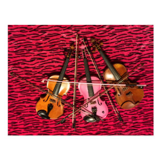 Violin Photo gifts Postcard