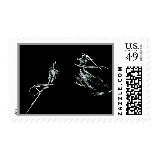 Violin Solo Postage Stamp