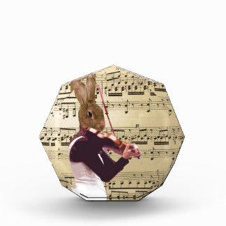 Violinista divertido del conejo de conejito