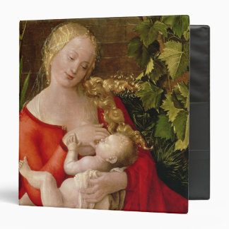 Virgin and Child 'Madonna with the Iris', 1508 Binder