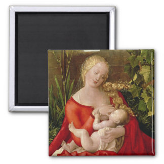 Virgin and Child 'Madonna with the Iris', 1508 Magnet