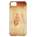 Virgin of Guadalupe in Real heart iPhone 5C Case