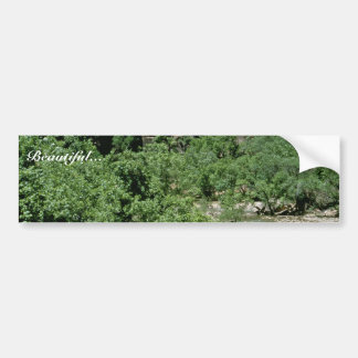 Virgin River at Zion National Park Bumper Sticker